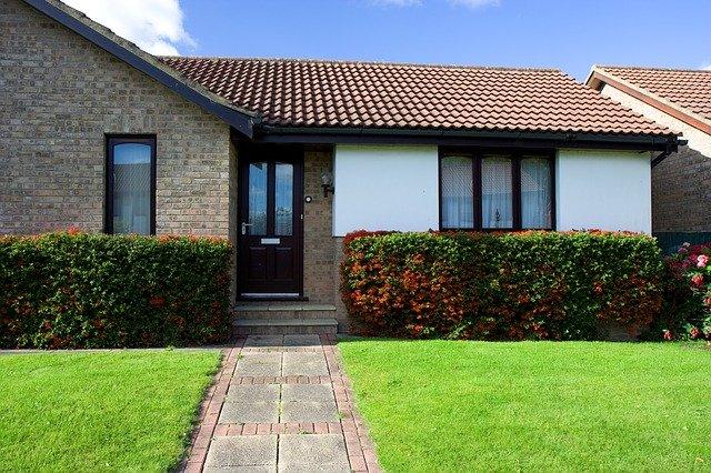 trávník a živý plot před domem
